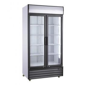 Armoire à boissons 800L 2 portes battantes